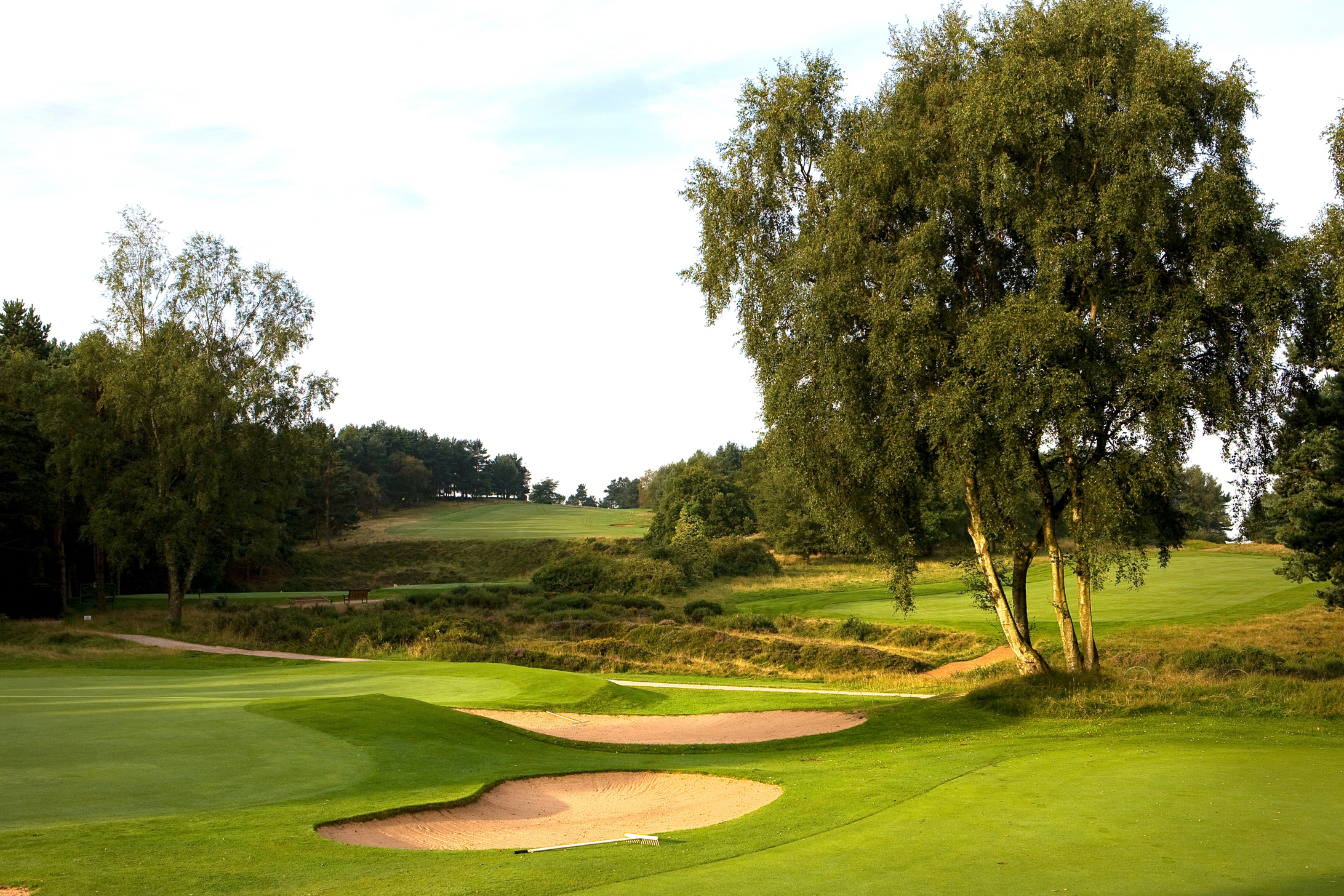southern mens golf lands - HD2184×1456