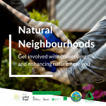 Natural Neighbourhoods: Get involved with conserving and enhancing nature near you!
